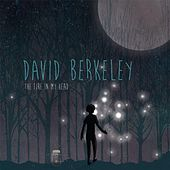 Play & Download The Fire in My Head by David Berkeley | Napster