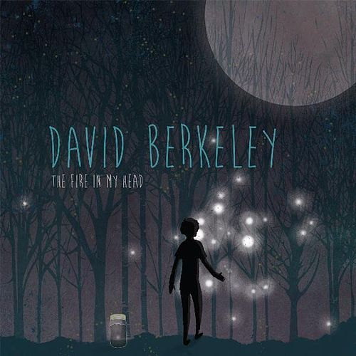 The Fire in My Head by David Berkeley