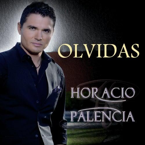 Play & Download Olvidas by Horacio Palencia | Napster