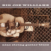 Play & Download Nine String Guitar Blues by Big Joe Williams | Napster