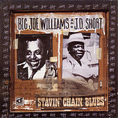 Play & Download Stavin' Chain Blues by Big Joe Williams | Napster