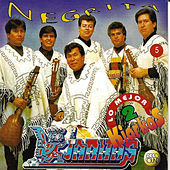 Play & Download Kjarkas: Lo Mejor Vol. 2: Negrita by K'Jarkas | Napster