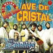 Play & Download Kjarkas: Lo Mejor Vol. 3: Ave de Cristal by K'Jarkas | Napster
