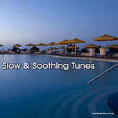 Play & Download Slow and Soothing Tunes by Various Artists | Napster