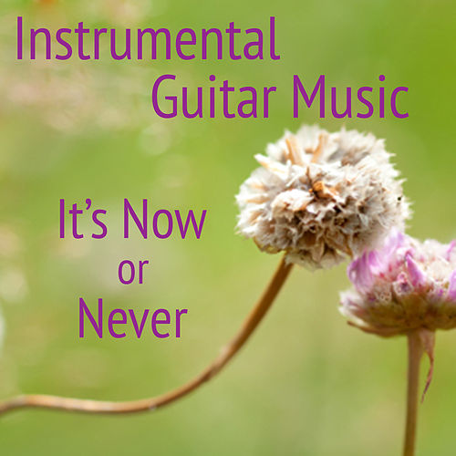 Play & Download Instrumental Guitar Music: It's Now or Never by The O'Neill Brothers Group | Napster