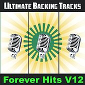 Ultimate Backing Tracks: Forever Hits, Vol. 12 by Soundmachine