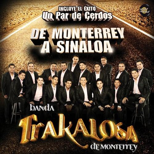 Play & Download De Monterrey a Sinaloa by Banda La Trakalosa | Napster