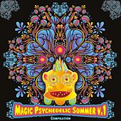 Magic Psychedelic Summer V.1 - EP by Various Artists