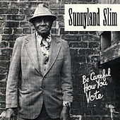 Play & Download Be Careful How You Vote by Sunnyland Slim | Napster