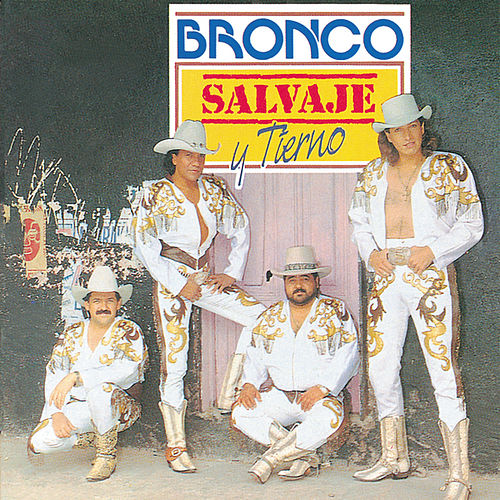 Play & Download Salvaje Y Tierno by Bronco | Napster