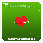 The Awakening 2013 by York