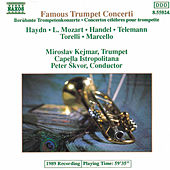 Famous Trumpet Concerti (unpublished) by Various Artists