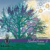HadraVision 2 (A Chillout Exploration) (Selected By Sysyphe) by Various Artists