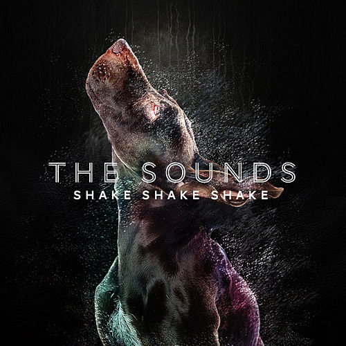 Play & Download Shake Shake Shake by The Sounds | Napster