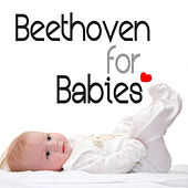 Play & Download Beethoven for Babies by London Symphony Orchestra | Napster