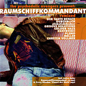 Pychedelic Avengers Present: Raumschiffkommandant remixed by Various Artists