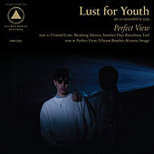 Play & Download Perfect View by Lust For Youth | Napster
