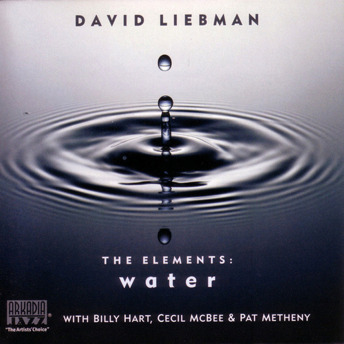 Play & Download The Elements: Water by David Liebman | Napster