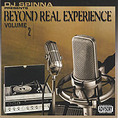 The Beyond Real Experience Vol. 2 by DJ Spinna