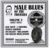 Play & Download Male Blues Of The Twenties Vol. 2 (1923-1928) by Various Artists | Napster