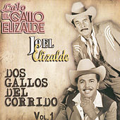 Dos Gallos del Corrido by Various Artists