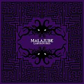 Play & Download Labyrinthes by Malajube | Napster