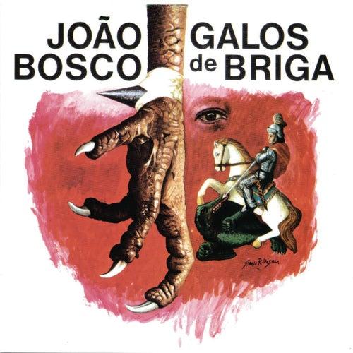Play & Download Galos De Briga by João Bosco | Napster