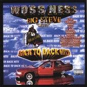 Back To Back Hits by Big Steve