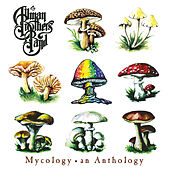 Play & Download Mycology: An Anthology by The Allman Brothers Band | Napster