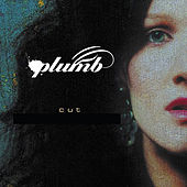 Cut (Bronleewe & Bose Radio Edit) by Plumb