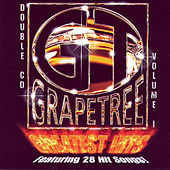 Play & Download Grapetree Greatest Hits, Vol. 1 by Various Artists | Napster