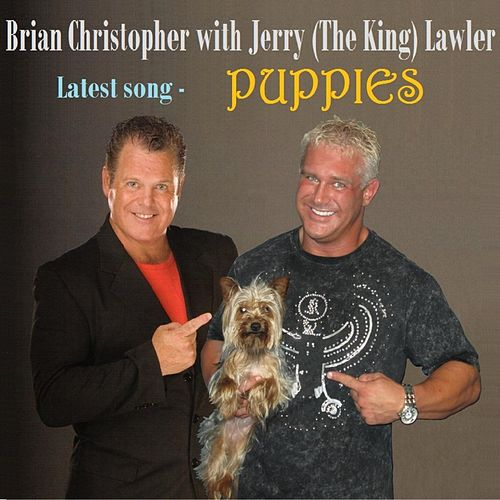 brian lawler and jerry relationship advice