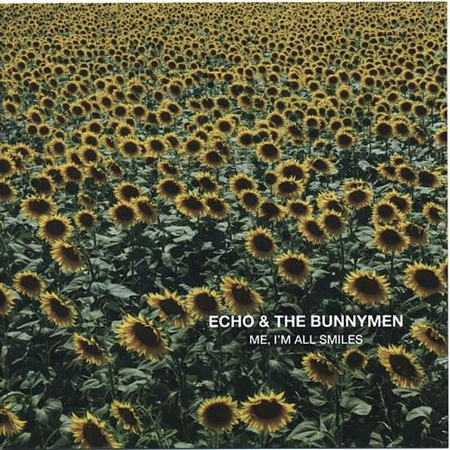 Me, I'm All Smiles by Echo and the Bunnymen