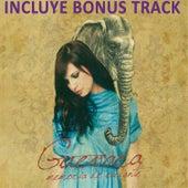 Memoria de Elefante (Bonus Track) by Guevara