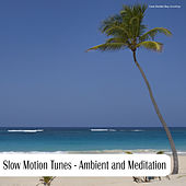 Play & Download Slow Motion Tunes - Ambient and Meditation by Various Artists | Napster