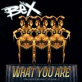 Play & Download What You Are (The Dance Remixes), Vol. 2 by Bex | Napster