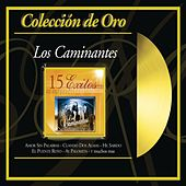 Play & Download Coleccion De Oro: 15 Exitos by Los Caminantes | Napster
