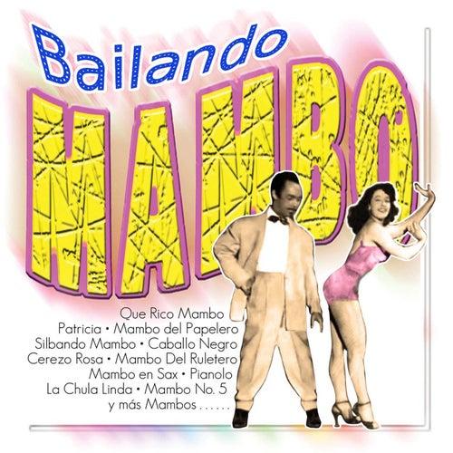 Play & Download Bailando Mambo by Perez Prado | Napster