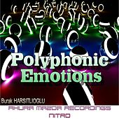 Polyphonic Emotions by Burak Harsitlioglu