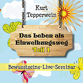 Bewusstseins-Live-Seminar: Das Leben als Einweihungsweg, Teil 1 by Kurt Tepperwein