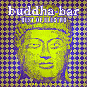 Play & Download Buddha-Bar: Best of Electro - Rare Grooves by Various Artists | Napster