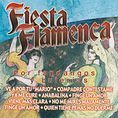 Play & Download Fiesta Flamenca por Fandangos y Bulerías by Various Artists | Napster
