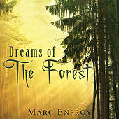 Dreams of the Forest by Marc Enfroy
