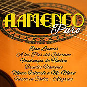 Play & Download Flamenco Puro by Various Artists | Napster