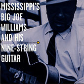 Play & Download Mississippi's Big Joe Williams and His Nine-String Guitar by Big Joe Williams | Napster