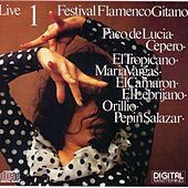 Play & Download Festival Flamenco Gitano 1 Live by Various Artists | Napster