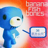 Play & Download 36 qm by Bananafishbones | Napster