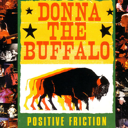 Positive Friction by Donna The Buffalo