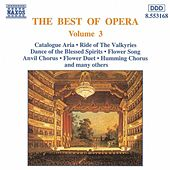 Play & Download The Best of Opera Vol. 3 by Various Artists | Napster
