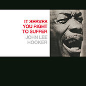 Play & Download It Serves You Right To Suffer by John Lee Hooker | Napster